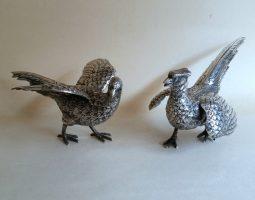 Pair silver pheasants